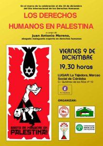 """Cartel charla coloquio """"Los Derechos Humanos en Palestina"""""""